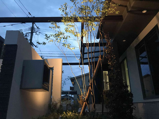 エクステリアライティング・ガーデンライティング