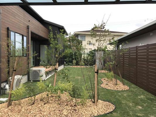 見切りでメリハリのある植栽と天然芝のガーデン