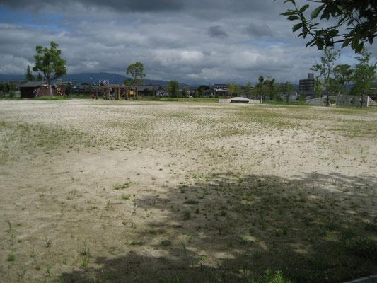 JGS未施工 公園B 雑草が生い茂り利用しにくい状態。