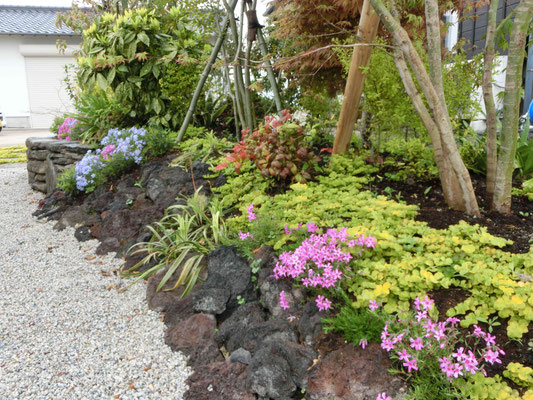 溶岩石と草花