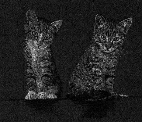 Dierenportret twee tijger kittens: Wit pastelpotlood en houtskool op zwart papier (2016)