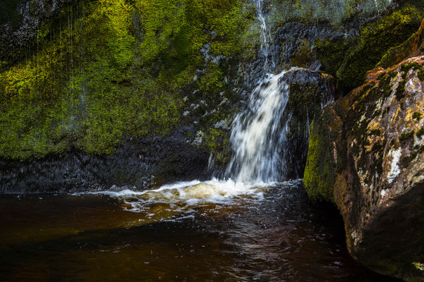_D4S7147_Powercourt-Cascade de Waterford-Wiclow