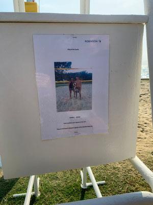 Erfolgreiches Beachvolleyballdoppel :-)