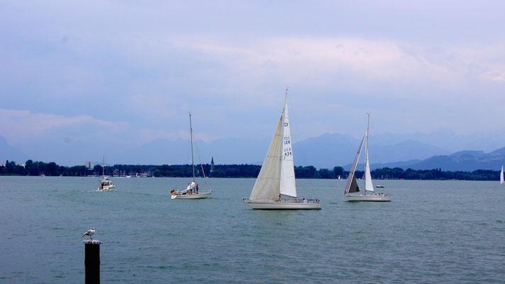 Zieleinlauf beim Lochauer Yacht Club