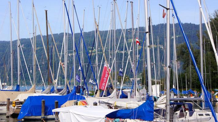 Beginn der Tourenwoche 2014 beim Yacht Club Bregenz