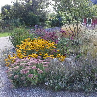 Eine Neuanlage gestaltet Garten und Landschaft