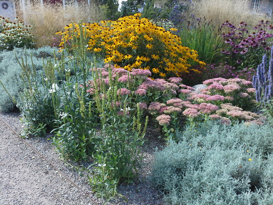 Hennings Garten und Landschaftsbau heisst Sie herzlich willkommen!