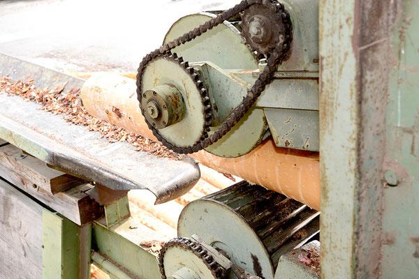 Endrindungsmaschine mit Holzbloch
