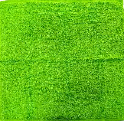 Paño cocina Dolz liso Verde