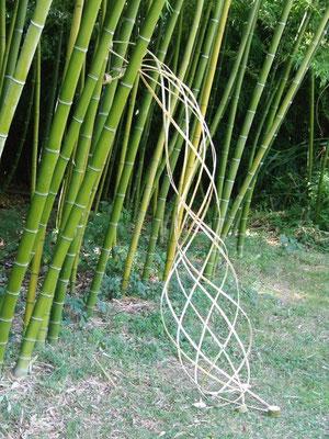 Parc aux bambous 2008