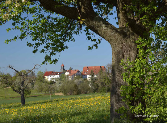 April 2020, Eschenbach