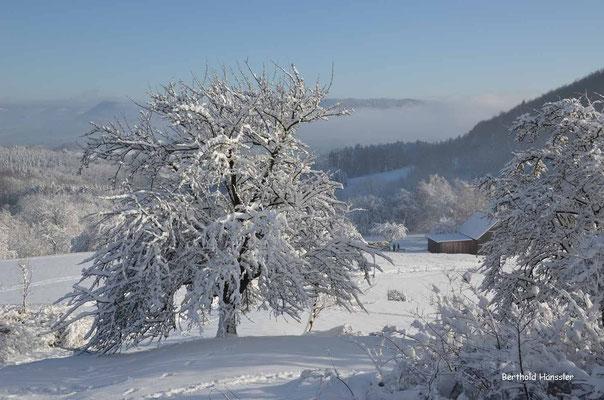 Winter auf der Alb beim Fränkel