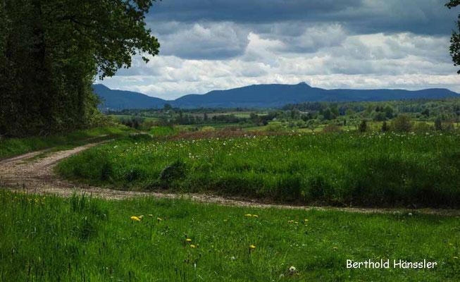 Uhingen - Blick über Sparwiesen zur Teck