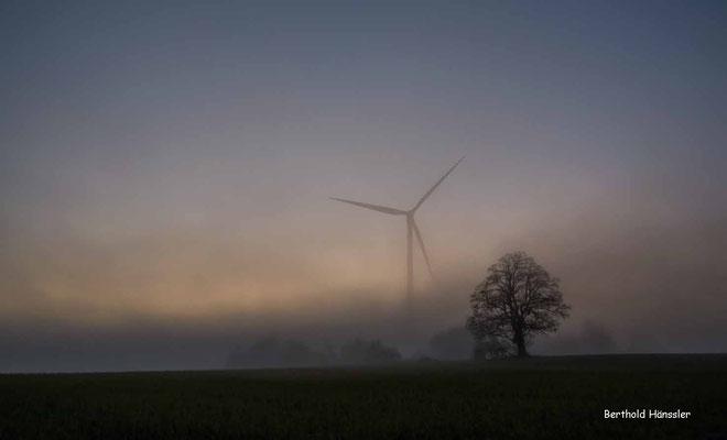 Herbstliche Morgenstimmung zwischen Aufhausen und Türkheim