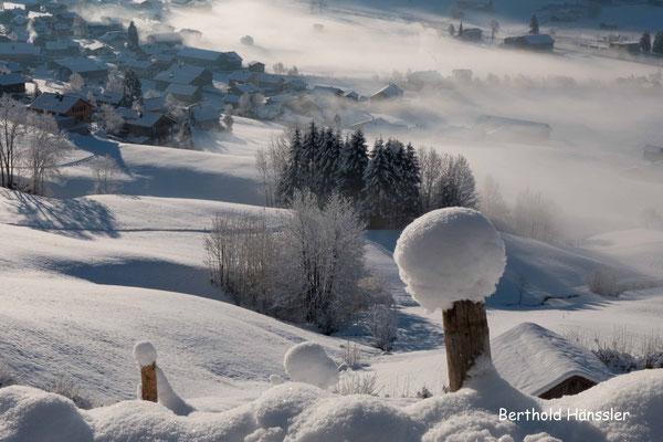 Bregenzer Wald, Au