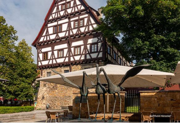 2021, Museum Storchen