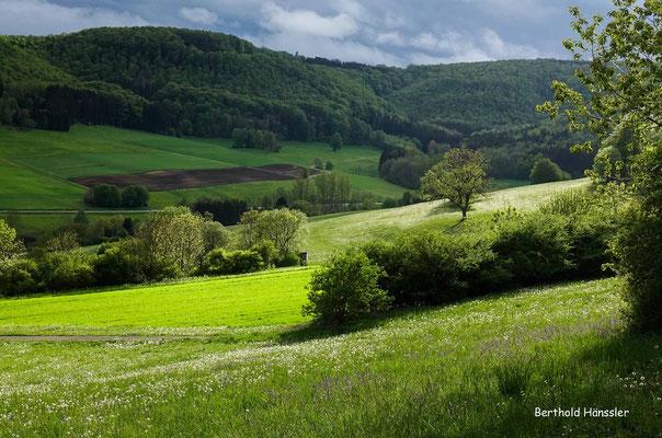 Mai 2020, Landschaft bei Reichenbach i.T.