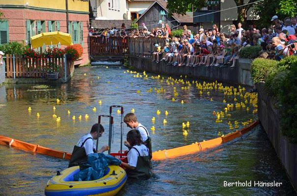 Süßen - Entenrennen bem Stadtfest