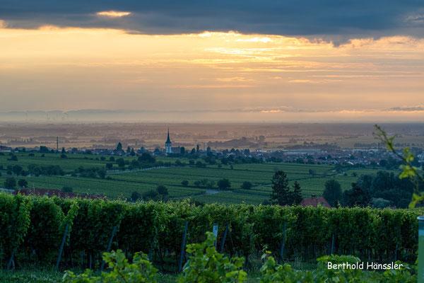 Pfalz - bei St. Martin