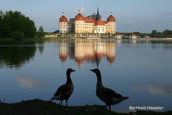 Sachsen - Schloss Moritzburg