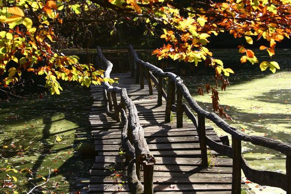 Ehemaliger Steg am Linsenholzsee