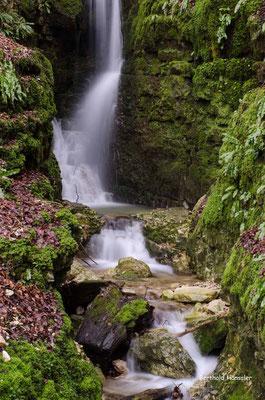 Kleiner Wasserfall im Wittlinger Steig
