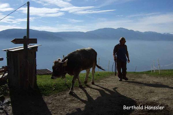 Südtirol - Höhenweg bei Vellau