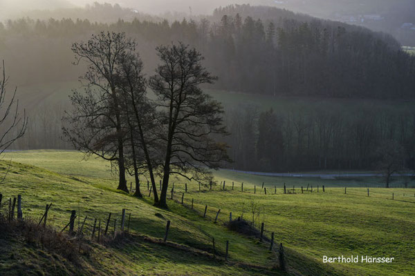 Februar 2021, Morgenstimmung bei Ottenbach