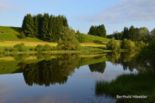 Bayern - Morgenstimmung an einem kleinen See in der Nähe des Lechsees