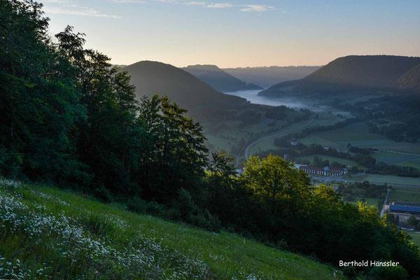 Mai 2020, Oberhalb von Reichenbach i.T. mit Blick Richtung Hausen