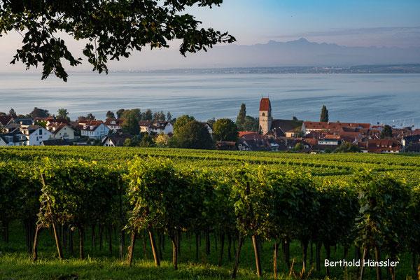 Am Bodensee - bei Hagnau