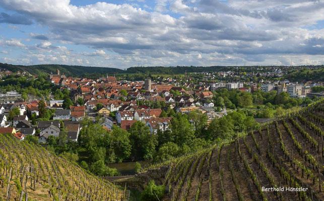 April 2020, Baden-Württemberg, Neckartal, Besigheim