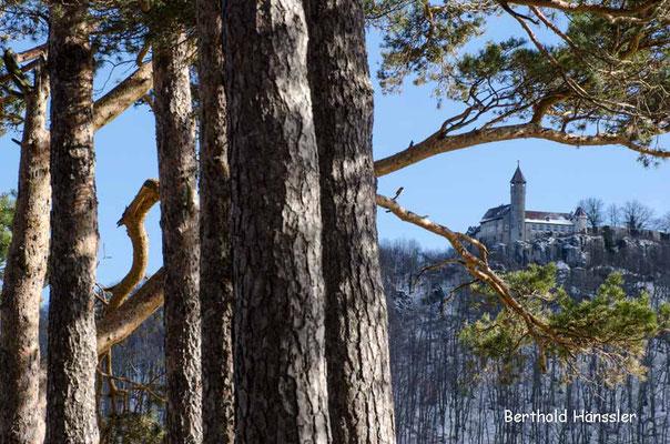 Burg Teck vom Hohenbol aus