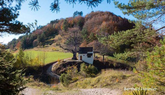 Naturdenkmal bei den Heidhöfen