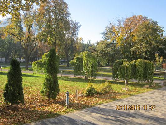 Парк около театра