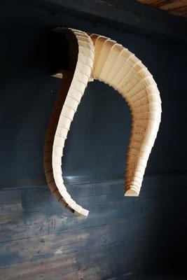 Tusks02  2018  Lärche  80x50x140cm