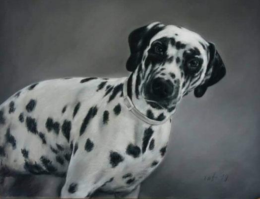 Hund Pastellgemälde