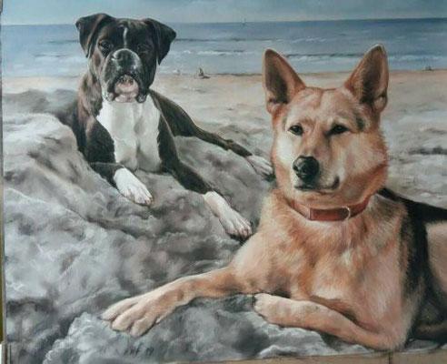 Hunde Pastellgemälde