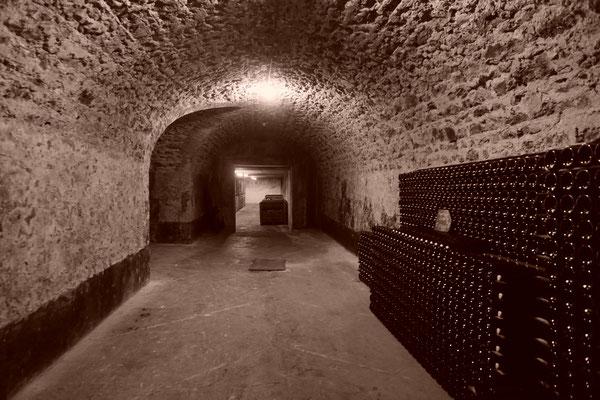 Cellar in Champagne Paul Launois | Champagne Launois Paul @ Le-Mesnil-sur-Oger - Côte des Blancs (proche Épernay)