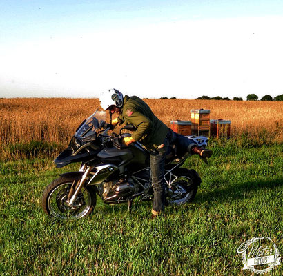 Motorcircus Test BMW R 1200 GS