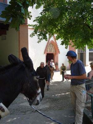 Mit Esel Janosch am Kloster Marienthal