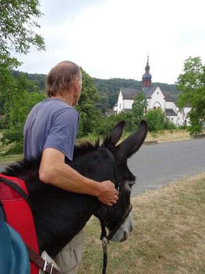 Esel Janosch am Kloster Eberbach