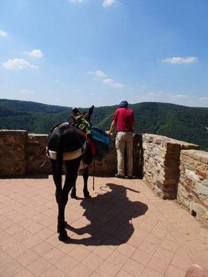 Mit Esel Janosch auf dem Klostersteig