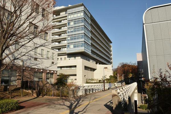 昭和大学病院通り