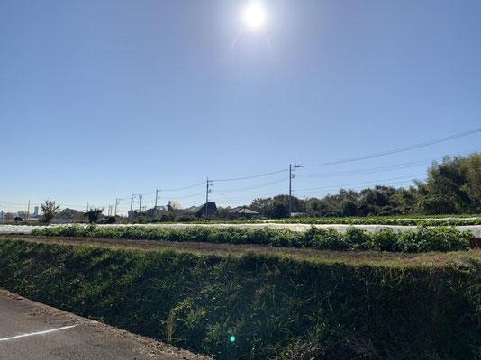 東方農専地区