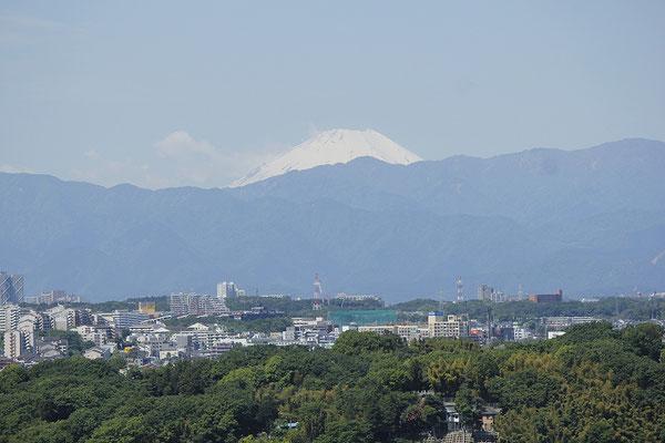 14.ふれあいの丘連合自治会 川和富士からの眺望