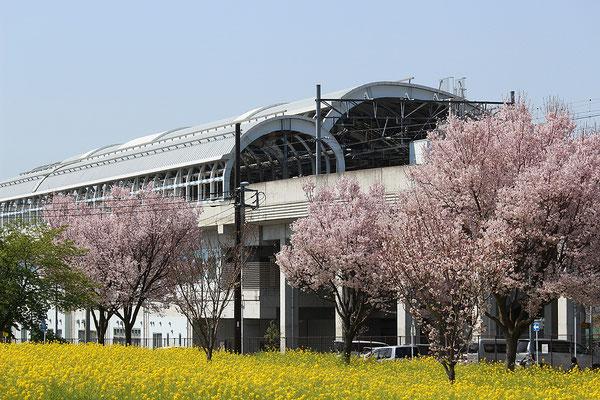 川和町駅周辺