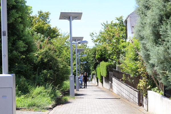 中川3丁目 自転車歩行者専用道路