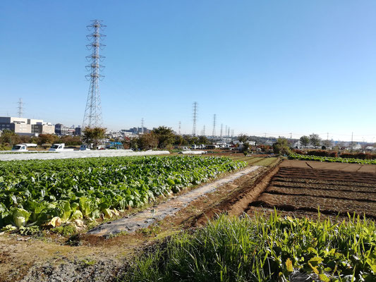 東方農専地区と市街化地域