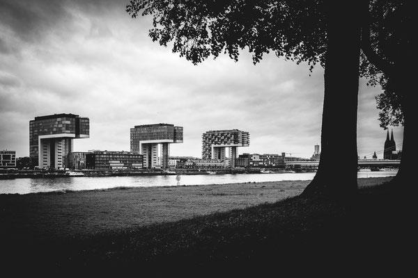 Pollerwiesen mit Kranhäuser im Herbst - Sven Brandenburg